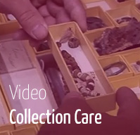 Video - Collection Care Konservierung und Restaurierung Angewandte Wien