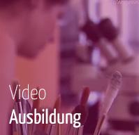 Video - Ausbildung Konservierung und Restaurierung Angewandte Wien